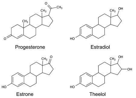 Structural formulas of female sex hormones  progesterone, estradiol, estrone, estriol , 2D Illustration, vector
