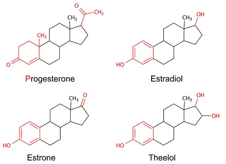 Structural formulas of female sex hormones  progesterone, estradiol, estrone, estriol  with marked variable fragments, 2D Illustration, vector Vectores