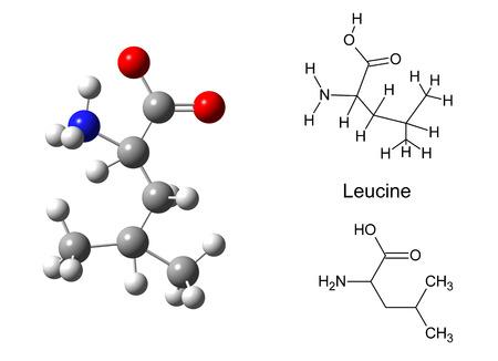 glycine: Structural model of glycine molecule on white background, 3d illustration