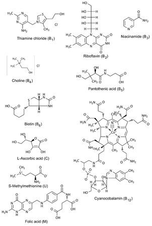 ascorbic: Las f�rmulas qu�micas de las vitaminas solubles en agua, 2d ilustraci�n, vector, aislado en blanco