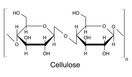 celulosa: La fórmula química estructural del polímero de celulosa, ilustración 2D, vector, aislado en blanco