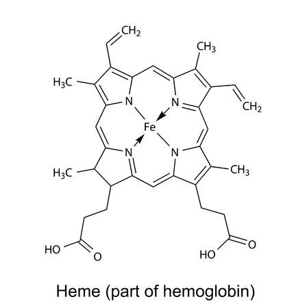 흰색 배경에 구조 화학 헴 분자의 공식 2D 그림, 벡터, 격리