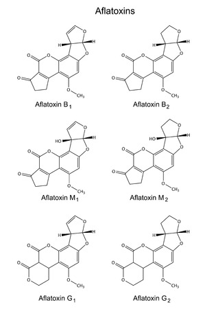 contaminant: Structural chemical formulas of aflatoxins