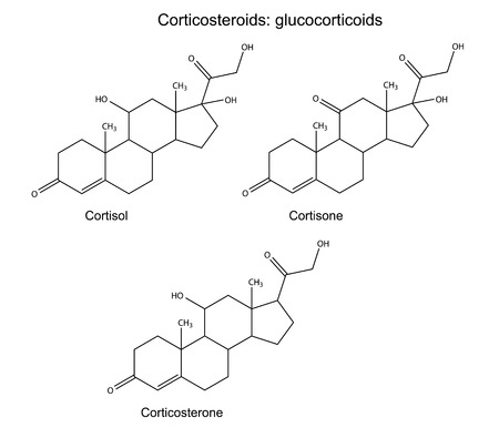 physiological: Structural chemical formulas of corticosteroids  glucocorticoids