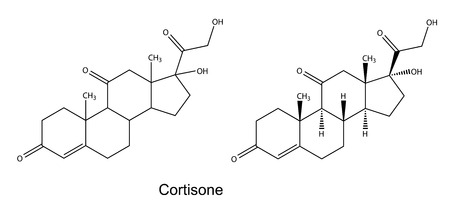Structural chemical formulas of cortisone, 2D illustration, vector, isolated on white background