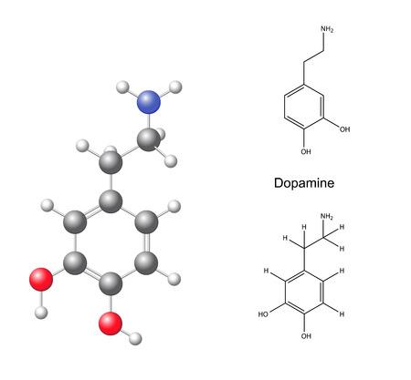 Structural chemical formulas and model of dopamine Illustration