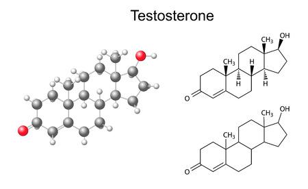 Structurele chemische formules en het model van testosteron molecuul, 2D-en 3D illustratie Stockfoto - 29002345