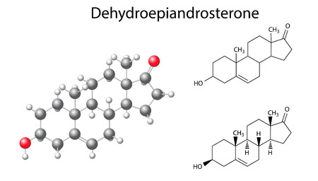 progesterone: Structural chemical formulas and model of dehydroepiandrosterone molecule