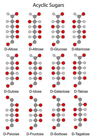 acyclic: Acyclic basic structural chemical formulas of monosaccharides  hexoses