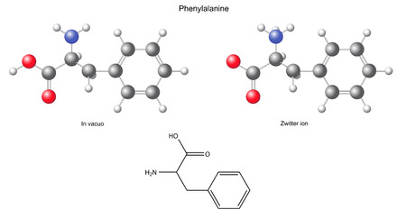 synthesis: Phenylalanine  Phe  - chemical structural formula and models, amino acid, in vacuo, zwitterion, 2D and 3D illustration