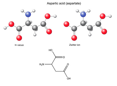 asp: Aspartic acid  Asp  - chemical structural formula and models, amino acid, in vacuo, zwitterion, 2D and 3D illustration Illustration