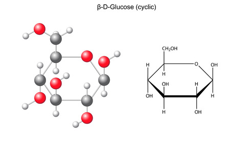 Structural chemical formula and model of glucose  beta-D-glucose Illustration