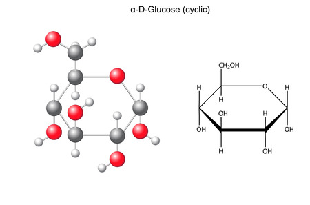 acyclic: Structural chemical formula and model of glucose  alpha-D-glucose