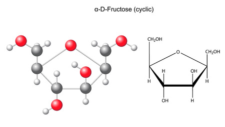 acyclic: Structural chemical formula and model of fructose  alpha-D-fructose Illustration