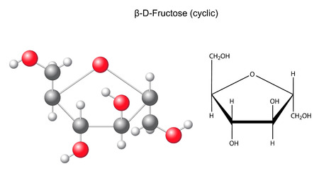 Structural chemical formula and model of fructose  beta-D-fructose  Stock Illustratie