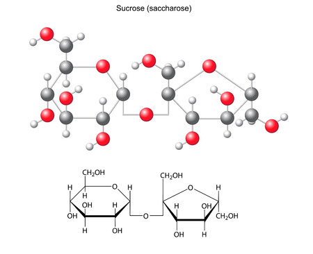 acyclic: Structural chemical formula and model of sucrose  saccharose Illustration