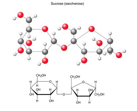 Structural chemical formula and model of sucrose  saccharose Stock Illustratie