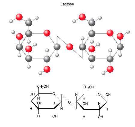 Szerkezeti Kémiai képlet és a modell laktóz