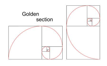 golden ratio: Ilustraci�n de secci�n doble espiral �urea, proporci�n, proporci�n, aislado en fondo blanco Vectores