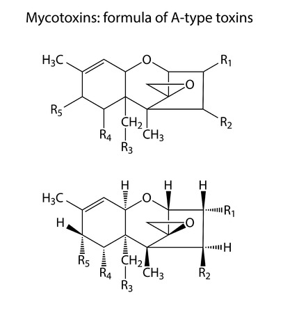 contaminant: General structural chemical formulas of mycotoxins  A-type , 2d illustration,  isolated on white background, vector, eps 8 Illustration