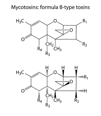 contaminant: General structural chemical formulas of mycotoxins  B-type , 2d illustration,  isolated on white background, vector, eps 8 Illustration