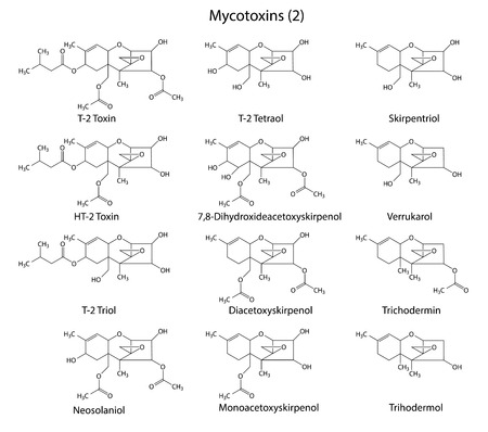 contaminant: Structural chemical formulas of A-type mycotoxins Illustration