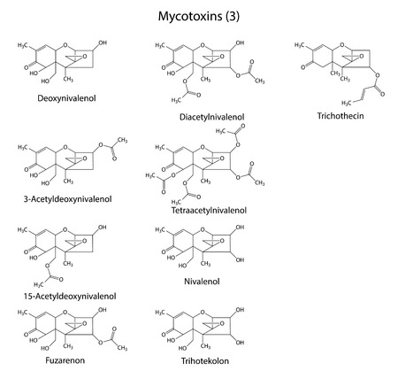 mildew: Structural chemical formulas of B-type mycotoxins
