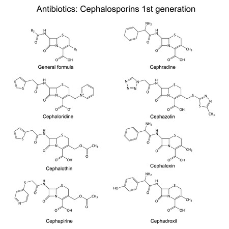 Structural chemical formulas of antibiotics - cephalosporins of first generation  beta-lactam group   cephaloridine, cephalothin, cephapirine, cephradine, cephazolin, cephadroxil, cephalexin Vector