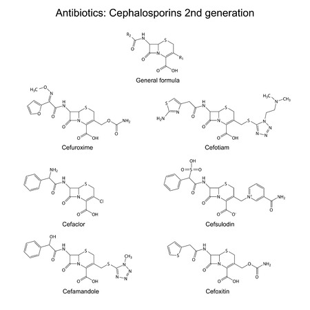 Structural chemical formulas of antibiotics - cephalosporins of second generation  beta-lactam group   cefuroxime, cefaclor, cefamandole, cefotiam, cefsulodin, cefoxitin, vector Vector