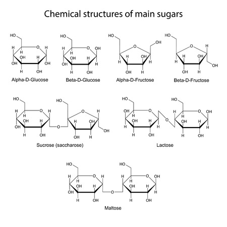 Kémiai szerkezetét fő cukrok: mono- és diszacharid, 2d illusztráció, elszigetelt fehér háttér, csontváz stílusban
