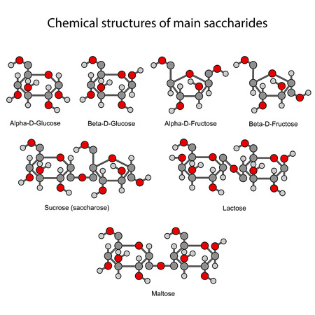 sucrose: Chemical formulas of main sugars: mono and disaccharides Illustration