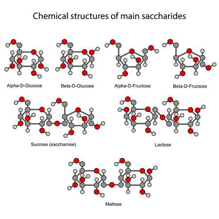 maltose: Chemical formulas of main sugars: mono and disaccharides Illustration