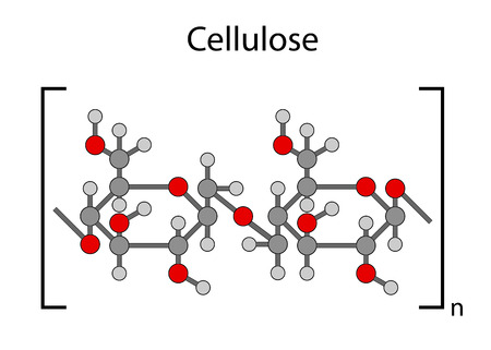 monomer: Structural chemical formula of cellulose polymer, 2d illustration, isolated on white