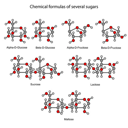 maltose: Structural chemical formulas of some sugars, 2d illustration, isolated on white background Illustration