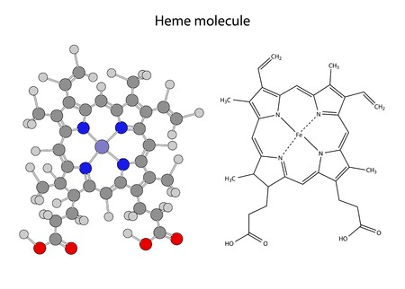 narcótico: Fórmula química estrutural da molécula heme, ilustração 2d Ilustração