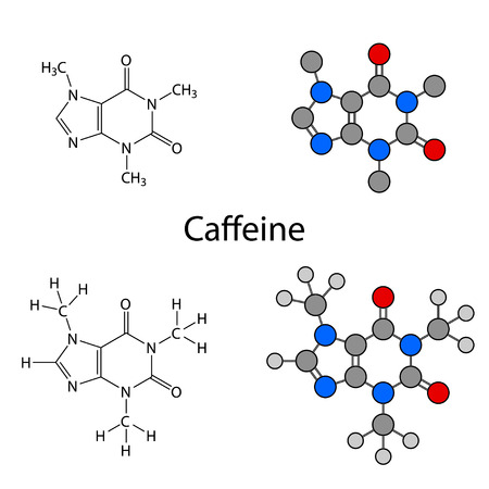 purine: Caffeine molecule - structural chemical formulas and models, skeletal & circles and sticks styles, 2d illustration, isolated on white background, vector, eps8 Illustration