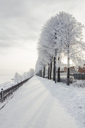 Winter cityscape with snow covered trees, outdoors shot Stock fotó