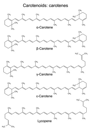 Structural chemical formulas of plant pigments - carotenoids carotenes, 2d illustration, vector, eps8
