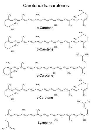 carotenoid: Structural chemical formulas of plant pigments - carotenoids carotenes, 2d illustration, vector, eps8