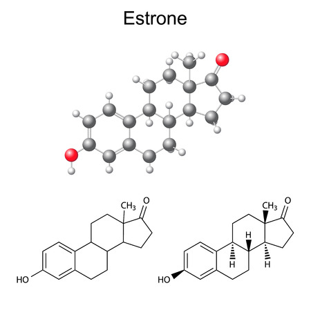 Structural chemical formulas and model of estrone molecule, 2D & 3D Illustration,  isolated on white background, vector, eps8