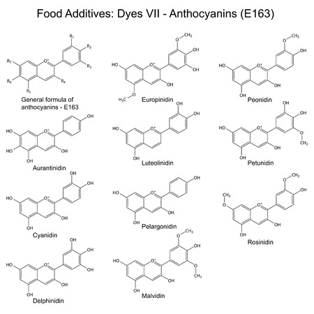 supplementation: Food dyes and plant pigments- anthocyanins, structural chemical formulas, seventh set E163, 2d illustration on a white background, vector, eps 8