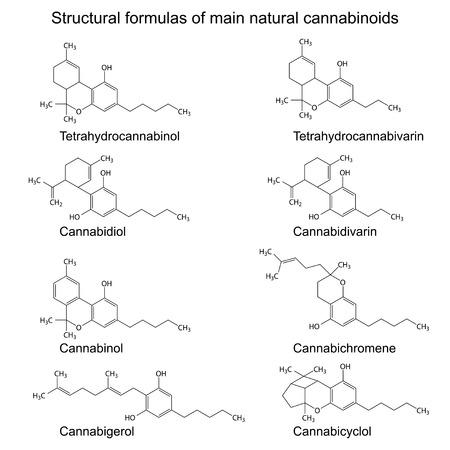 Chemische formules van natuurlijke cannabinoïden Stockfoto - 33898253