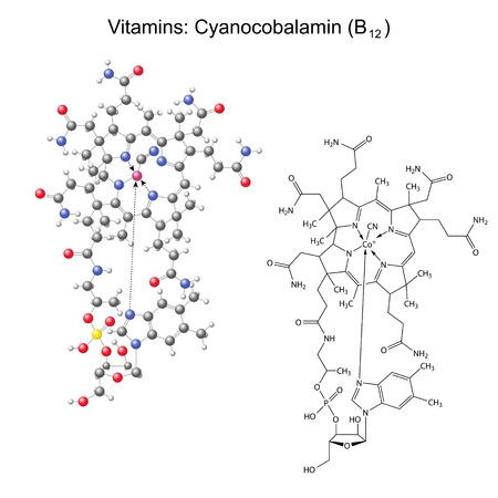 Structural chemical formula and model of vitamin B12 - cyanocobalamin