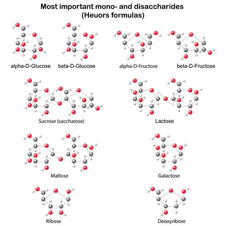 fruttosio: Modelli chimici di mono- principale e disaccaridi: glucosio, fruttosio, galattosio, ribosio, desossiribosio, saccarosio, lattosio, maltosio, illustrazione 3d bal & bastone stile, isolato, vettore Vettoriali