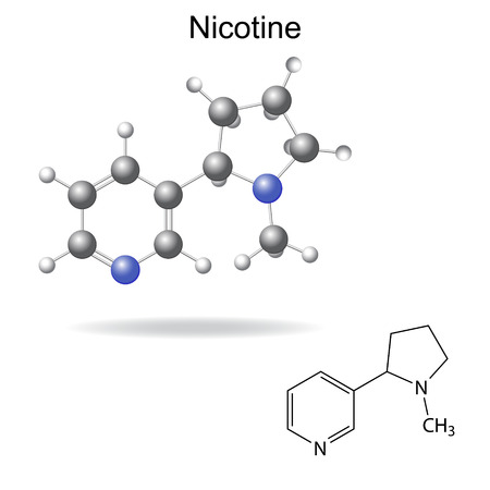 Structural chemical formula and model of  nicotine, 2d and 3d illustration, vector, eps 8 Illustration