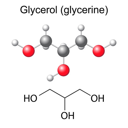 glycerol: Structural chemical formula and model of glycerol molecule, 2d and 3d illustration, isolated, vector, eps 8