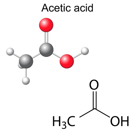 solvent: Structural chemical formula and model of acetic acid molecule, 2d and 3d illustration, isolated, vector, eps 8