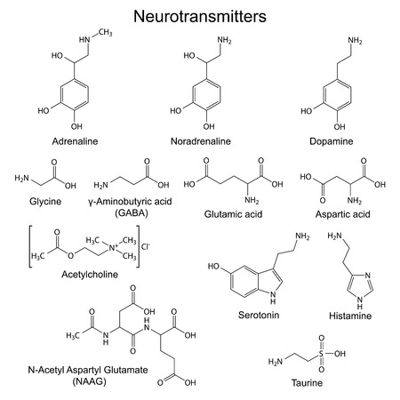 glutamate: Structural chemical formulas of basic neurotransmitters, 2d vector, eps 8