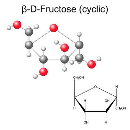 Szerkezeti kémiai képlet és a modell fruktóz - béta-D-fruktóz, 2D és 3D illusztráció, vektor, elszigetelt fehér háttér,