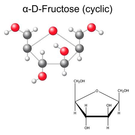 fruttosio: Formula chimica strutturale e il modello di fruttosio (alfa-D-fruttosio), 2D e 3D illustrazione, vettore, isolato su sfondo bianco, eps 8